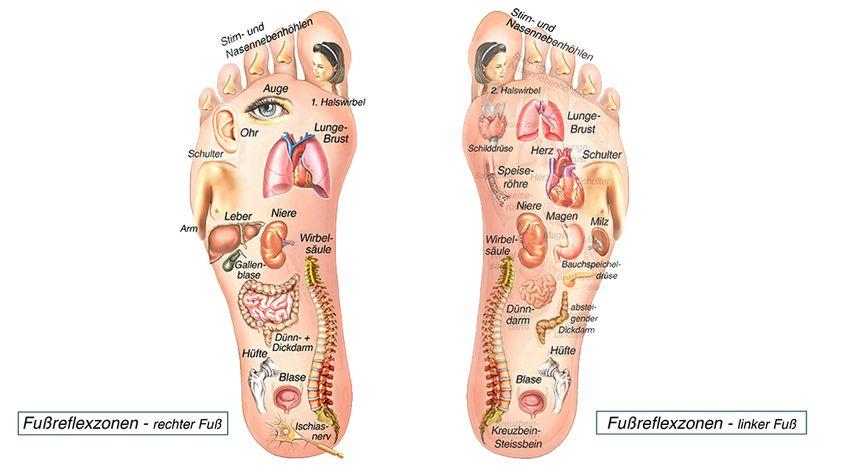 Fußmassage-Reflexzonen